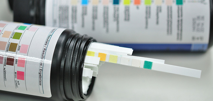 Drug screen testing strips in a bottle