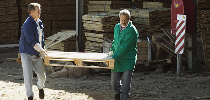 Two male workers carrying wood board