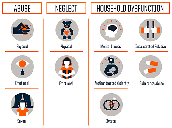 Graph of different adverse childhood experiences like abuse, neglect, and household dysfunction.