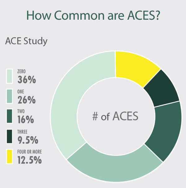 Circle graph describing the commonality of ACES